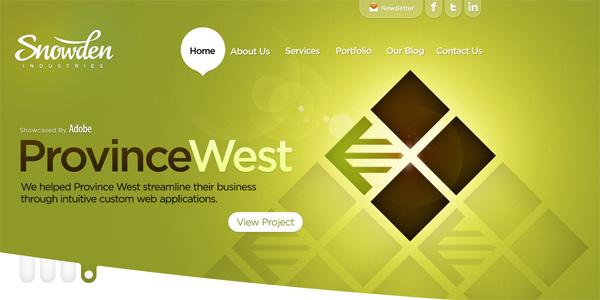 Mẫu thiết kế web sáng tạo 2011 - Snowdenindustries.com
